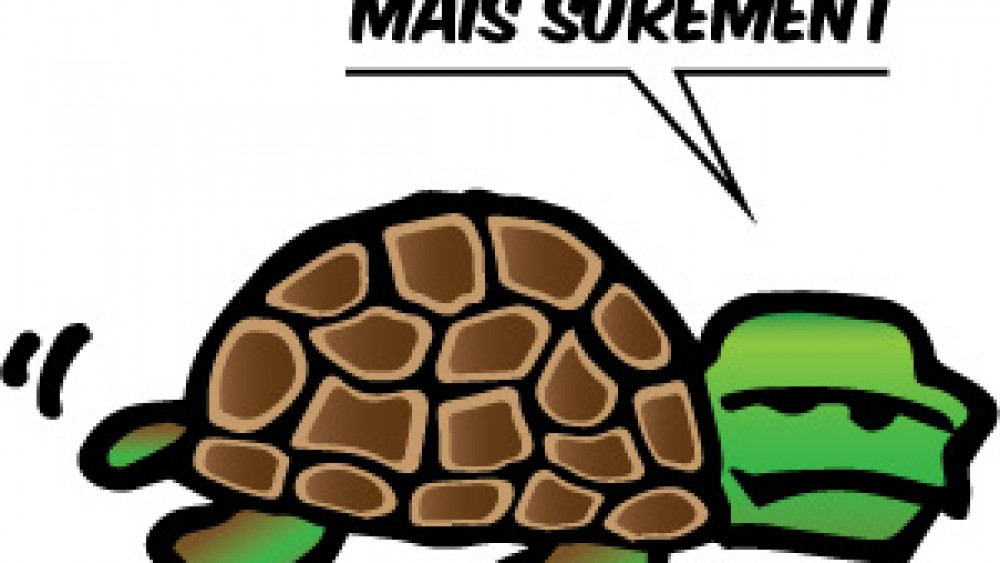 Learn French Expression: Doucement mais sûrement
