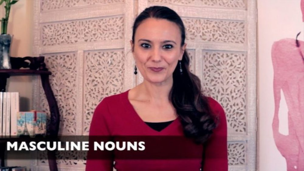 French for beginners Lesson 4.2 on the masculine/feminine of nouns